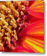 Sunflower Fire 4 Metal Print