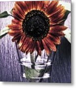 Sunflower In A Cup Metal Print