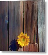 Sunflower In Barn Wood Metal Print by Garry Gay