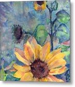 Sunflower In Bloom Metal Print
