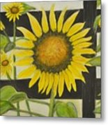 Sunflower In Your Face Metal Print