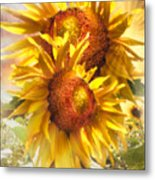 Sunflower Light Metal Print
