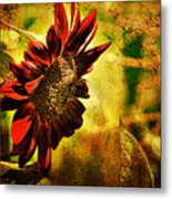 Sunflower Metal Print by Lois Bryan