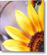 Sunflower Perspective Metal Print