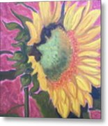 New Mexico Sunflower Metal Print