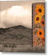 Sunflower Silo In Boulder County Colorado Sepia Color Print Metal Print