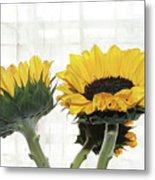 Sunflower Trio Metal Print