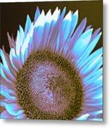 Sunflower Dusk Metal Print
