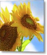 Sunflower Twins Metal Print
