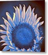 Sunflower Moonlight Metal Print
