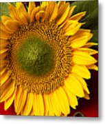Sunflower With Old Key Metal Print
