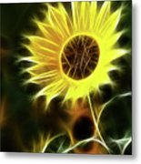 Sunflowers-5200-fractal Metal Print