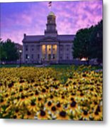Sunflowers At The Old Capitol Metal Print