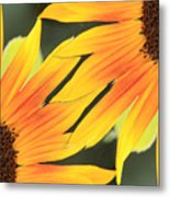Sunflowers Corners Metal Print