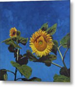 Sunflowers Metal Print by Marco Busoni