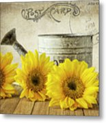 Sunflowers Postcard Metal Print
