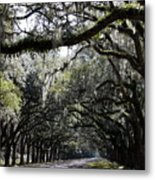 Sunlight And Shadows On Live Oaks Metal Print