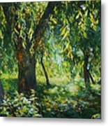 Sunlight Into The Willow Trees Metal Print