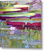Sunlight On Lily Pads Metal Print