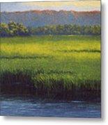 Sunlight On The Marsh Metal Print