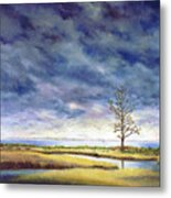 Sunlight On The Marshes 18x24 Metal Print