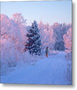 Sunlight Through The Frost Metal Print