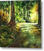 Sunlight Trial Port Moody Metal Print