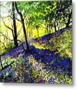 Sunlit Bluebell Wood Metal Print