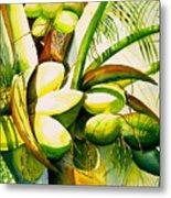 Sunlit Coconuts Metal Print