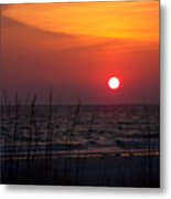Sunlit Night Metal Print