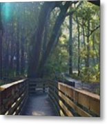 Sunlit Path Metal Print