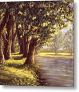 Sunlit Riverbank Metal Print