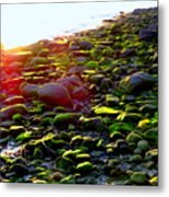 Sunlit Stones Metal Print