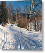 Sunlit Winter Landscape Metal Print