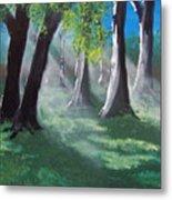 Sunlit Woods Metal Print