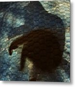 Sunning Shadow Metal Print by David Sutter