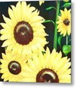 Sunny And Share Metal Print