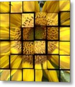Sunny Composition Metal Print