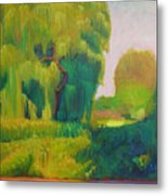 Sunny Day Indian Boundary Park Metal Print
