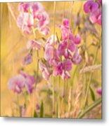 Sunny Garden 3 Metal Print
