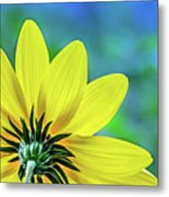 Sunny Outlook Metal Print
