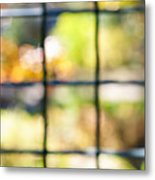 Sunny Outside Metal Print
