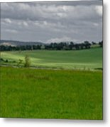 Sunny Patches On The Field. Metal Print