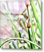 Sunny Rain Metal Print