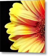 Sunny Side Over Easy Metal Print