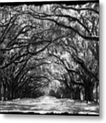 Sunny Southern Day - Black And White With Black Border Metal Print