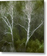 Sunol - Twins Metal Print