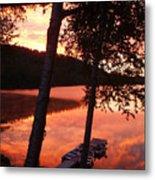 Sunrise And Birch Trees Metal Print