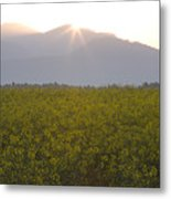 Sunrise Bursting Over The Kamnik Alps And Rapeseed Metal Print