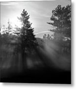 Sunrise Bursting Through Trees And Mist At Palsko Lake Metal Print